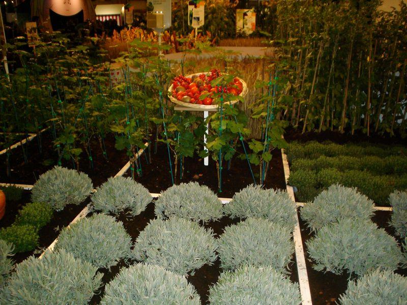 salondelagriculture2009057.jpg