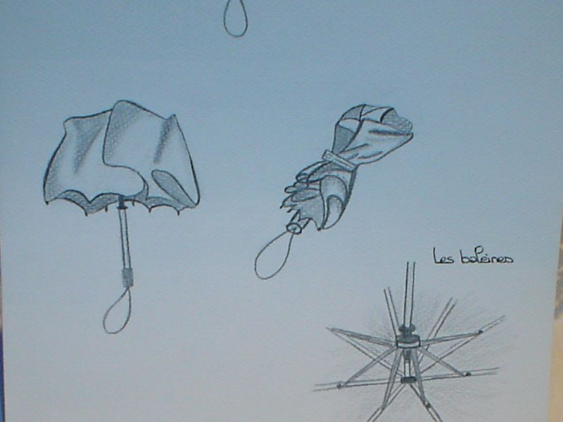 devoirparapluie011.jpg