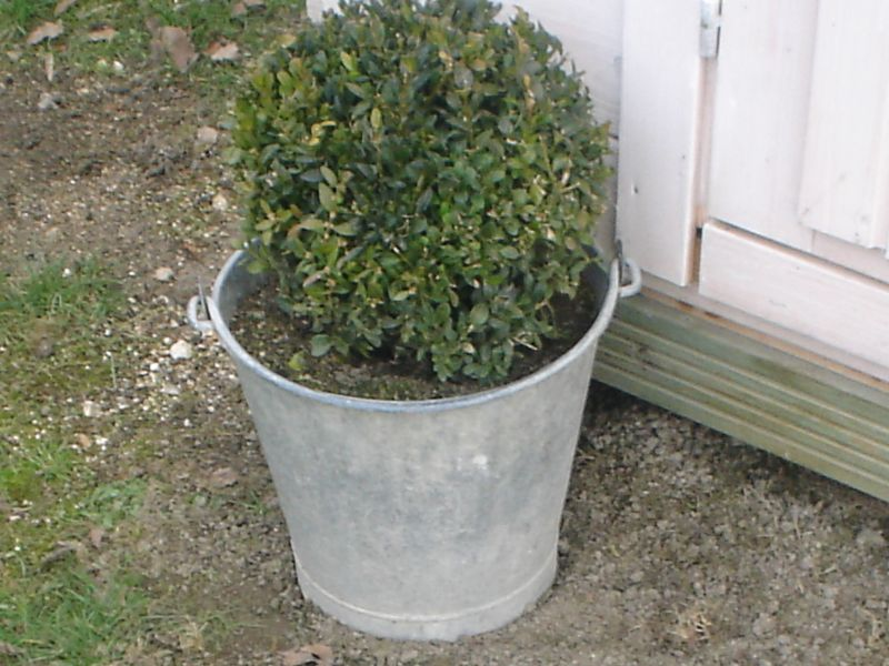 jardindeco025.jpg